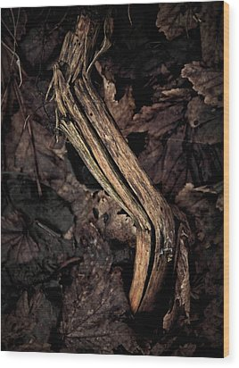 Untouchable Wood Print by Odd Jeppesen