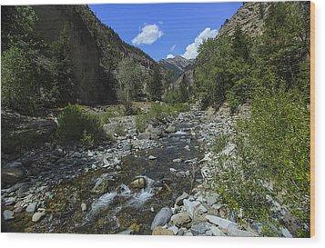 Up A Creek Wood Print