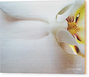 Wood Print featuring the photograph Up Close And Personal by Geri Glavis