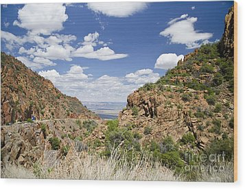 Wood Print featuring the photograph Up From Jerome Arizona by Maria Janicki