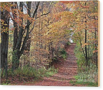 Up The Wooded Lane Wood Print