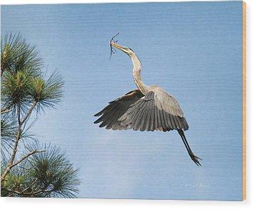 Up To The Nest Wood Print by Deborah Benoit