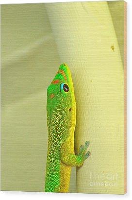 Upclose Wood Print by Lehua Pekelo-Stearns
