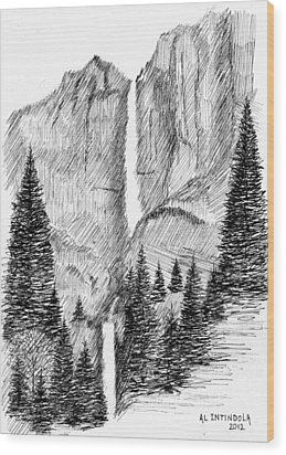 Upper And Lower Falls Wood Print