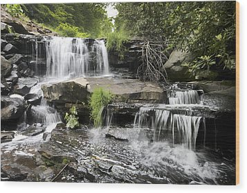Wood Print featuring the photograph Upper Goose Creek Falls by Robert Camp