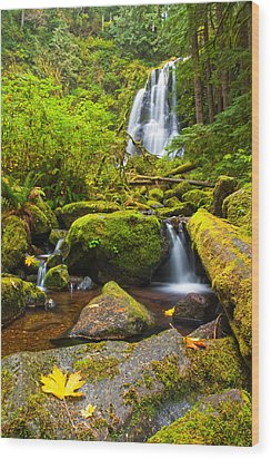 Upper Kentucky Falls - Autumn Wood Print by Patricia Davidson