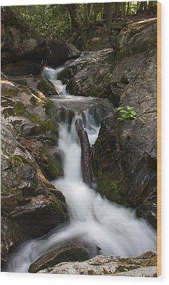 Upper Pup Creek Falls Wood Print