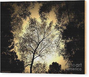 Upward Wood Print by Christy Ricafrente