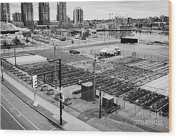 urban farm on unused lot at concord pacific place at false creek Vancouver BC Canada Wood Print by Joe Fox