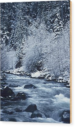Usa, Willamette National Forest Oregon Wood Print by Greg Vaughn