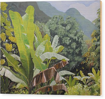 Utuado Puerto Rico Wood Print by Nancy Campbell