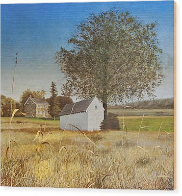 Valley Forge Spring House Wood Print by Randall Graham