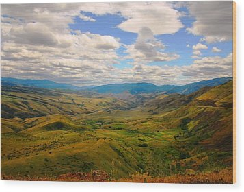 Valley In Northern Idaho Wood Print by Larry Moloney
