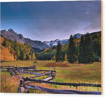 Valley Of Mt Sneffels Wood Print by Steven Reed
