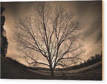 Valley Of Promise Wood Print by Mark Six