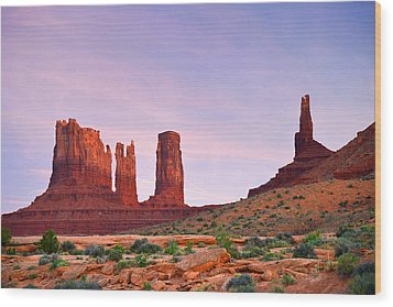 Valley Of The Gods - A Oasis For The Soul Wood Print by Christine Till