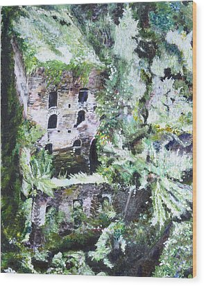 Valley Of The Mills Wood Print by Dottie Branchreeves