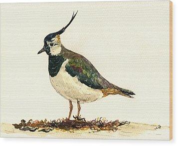 Vanellus Vanellus Wood Print by Juan  Bosco