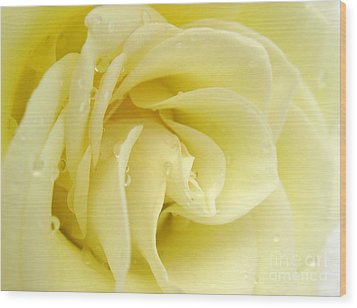 Vanilla Swirl Wood Print by Patti Whitten