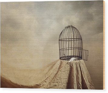 Vanishing Act Wood Print by Amy Weiss