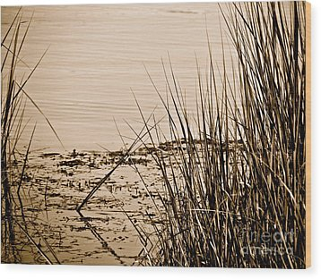 Vanishing  Wood Print by Q's House of Art ArtandFinePhotography
