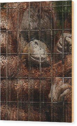 Vanishing Cage Wood Print by Jack Zulli