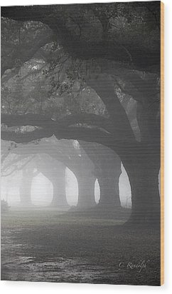 Vanishing Point Wood Print by Cheri Randolph