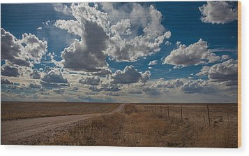 Wood Print featuring the photograph Days Of Our Lives In Kansas by Shirley Heier