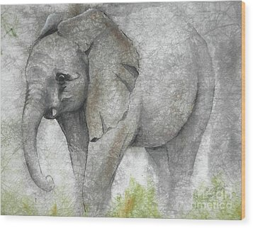 Vanishing Thunder Series-baby Elephant I Wood Print by Suzanne Schaefer
