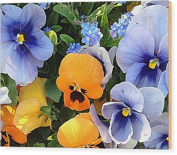 Wood Print featuring the photograph Various Violets by Gabriella Weninger - David