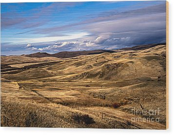 Vast View Of The Rolling Hills Wood Print by Robert Bales