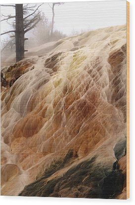 Veil Of Color Wood Print