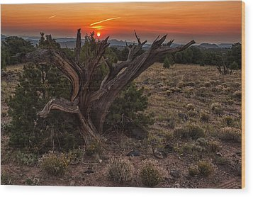 Veiled Sunrise Wood Print by Jennifer Grover
