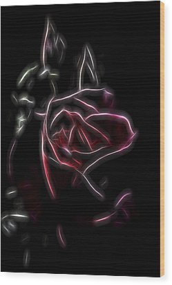 Velvet Rose 2 Wood Print by William Horden