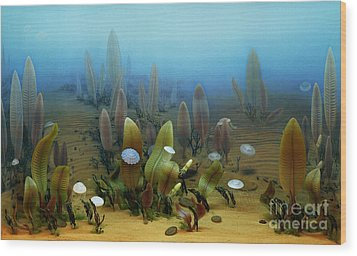 Vendian Marine Life Wood Print by Chase Studio