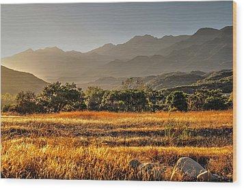 Ventura River Preserve Wood Print