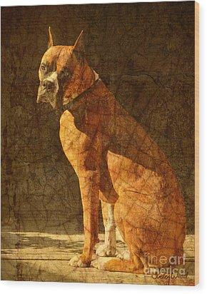 Vermeer's Dog Wood Print by Judy Wood