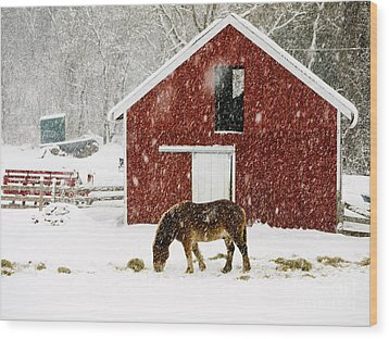 Vermont Christmas Eve Snowstorm Wood Print by Edward Fielding