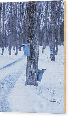 Vermont Maple Syrup Buckets Wood Print