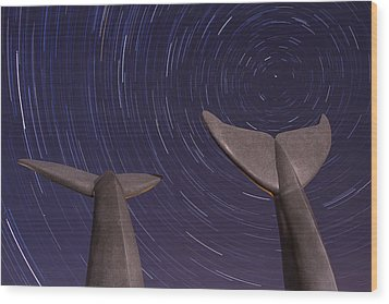 Vermont Night Landscape Star Trails Whale Tails Wood Print by Andy Gimino