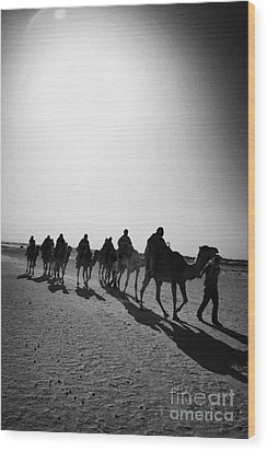 vertical hot sun beating down on sands and camel train in the sahara desert at Douz Tunisia Wood Print by Joe Fox