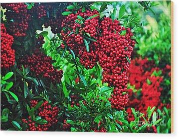 Very Berry Wood Print by Kaye Menner
