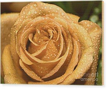 Very Wet Rose Wood Print by Debbie Portwood