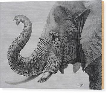 Veteran Wood Print by Tim Dangaran