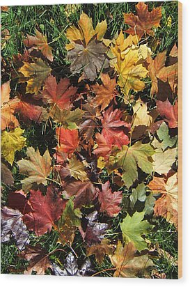 Vibrant Days Of Autumn Wood Print by Margaret McDermott