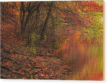 Vibrant Reflection Wood Print by Lourry Legarde