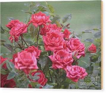 Victorian Rose Garden Wood Print by Carol Groenen