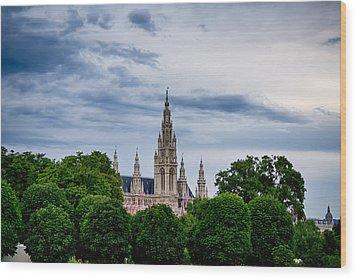 Vienna Rathaus Wood Print by Viacheslav Savitskiy
