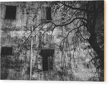 Vientiane Grey Wood Print by Dean Harte