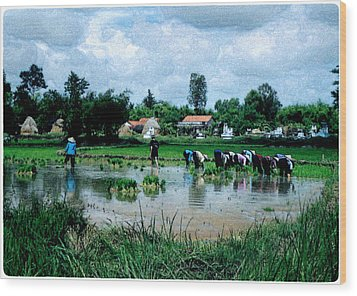 Vietnam Mekong Delta Wood Print by Udo Linke